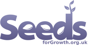 nice-blue-seeds-logo-small-light